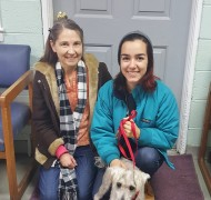 Our Adoptions